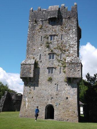 Aughnanure Castle : le château