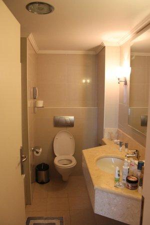 Sensimar Lindos Bay Resort & Spa : Одна из ванн.Слева за дверью сама ванна.Все чистое и целое