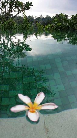 Amandari: Private villa pool