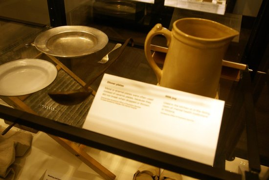Exhibits at Melbourne Museum