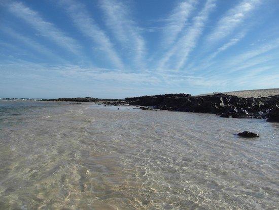 Corralejo Dunes: l'oceano