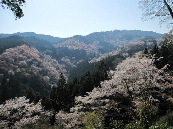Mt. Yoshino: View from Yoshimizu Temple
