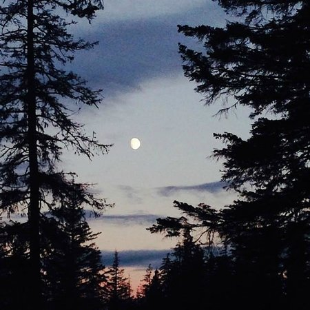 Alaska Creekside Cabins : Sunset view from the cabin