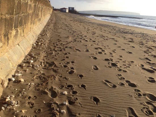 Shanklin to Ventnor Coastal Walk: こんな砂