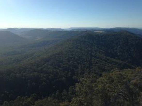 Binna Burra Mountain Lodge: View from Living Room