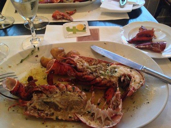 Barbavin: Baby homard grillé aux herbes !