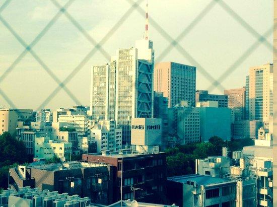 Hotel Niwa Tokyo: Vue sur Tokyo depuis la chambre