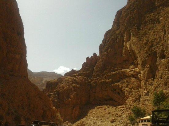 Camel Excursions Morocco: Amazing!