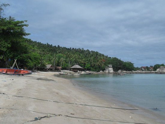 Sensi Paradise: View from beach in front of resort