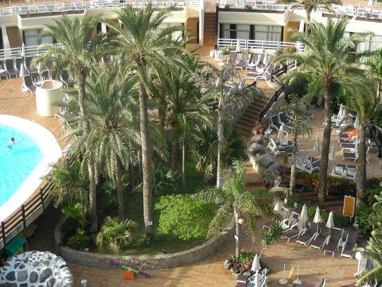 Gloria Palace San Agustín Thalasso & Hotel: Ogród hotelowy.