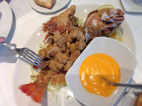 El Campero: Gallineta (pollo de mar)