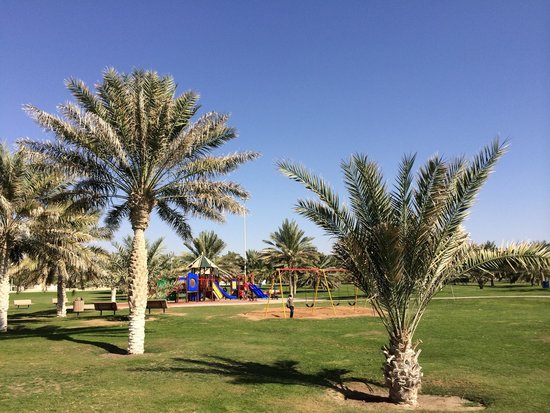 Mubazzarah-Park: Childran play ground