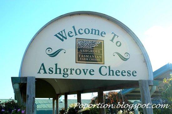 Ashgrove Tasmanian Farm Cheese: Welcome to Ashgrove Cheese!