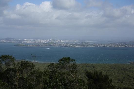 Rangitoto Island : view from Rangitoto