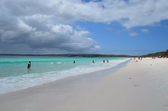 Colourful Trips - Day Tours: Jervis bay beaches (near Huskinsson)