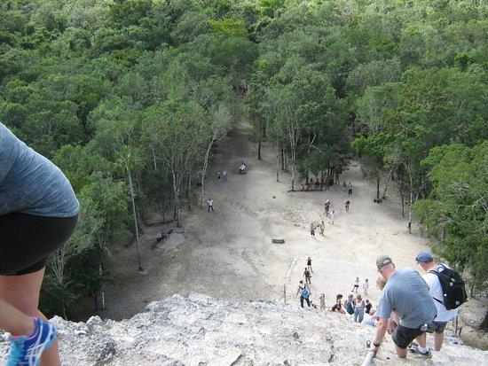 Coba Ruins: Looking down