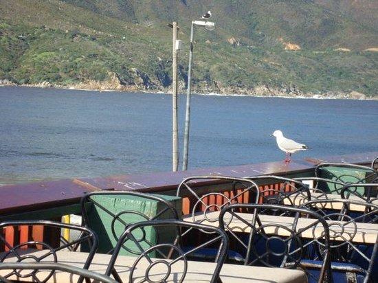 Hout Bay: Vista do restaurante