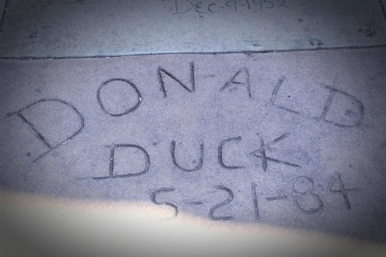 TCL Chinese Theatres : Donald Duck