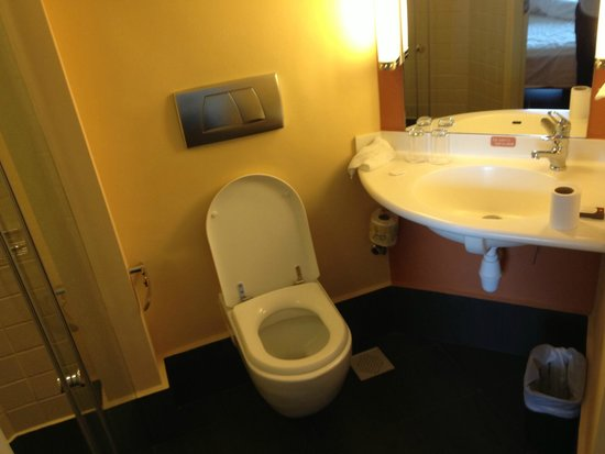 Ibis Singapore on Bencoolen: VERY tiny bathroom...