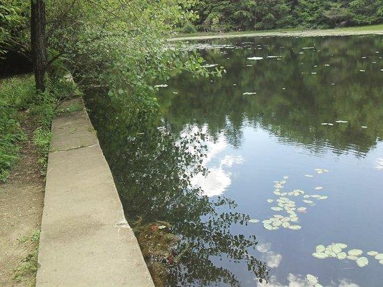 Retreat Trails: The Ice Pond
