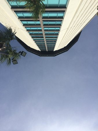 Four Points by Sheraton Orlando International Drive: Looking up from the poolside.