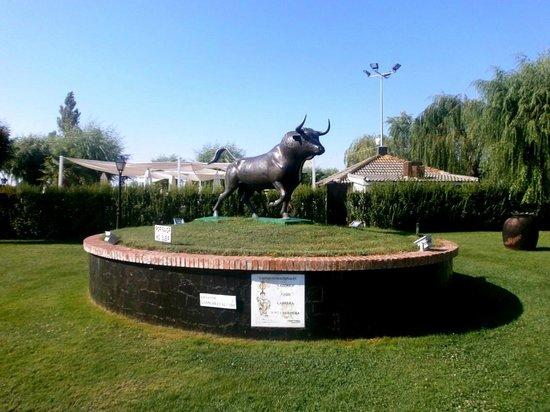 Hotel Conde Rodrigo II: Jardines del hotel