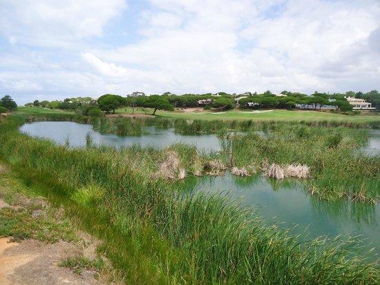Algarve By Segway: Lago cheio de aves raras