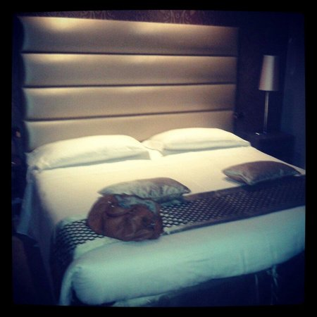 Hotel Mozart: Camera tripla
