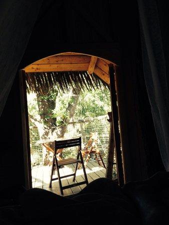 Les Cabanes du Varon: Terrasse