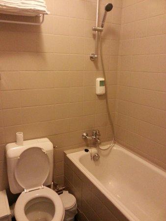 Hotel Le Panorama : Salle de bain vieillotte et sombre.