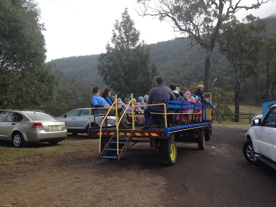 Bestbrook Mountain Resort : On the wagon