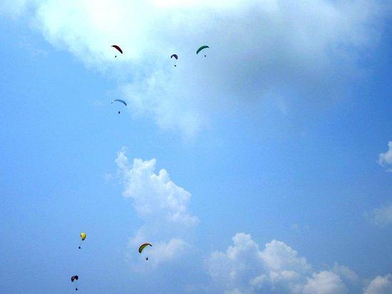 Trekking Team Pvt. Ltd. - Day Tours : gliders!!