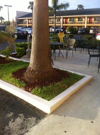 Super 8 Orlando International Drive : Área de descanso e café.