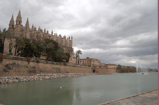 Palma Cathedral Le Seu: Cathedral 3