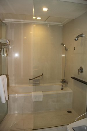 Grand Sukhumvit Hotel Bangkok : Shower
