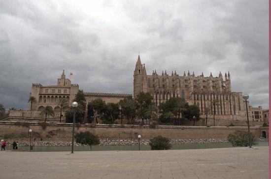 Palma Cathedral Le Seu: Cathedral 1