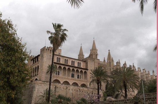 Palma Cathedral Le Seu: Cathedral 2