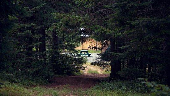 Domaine Summum: Trail