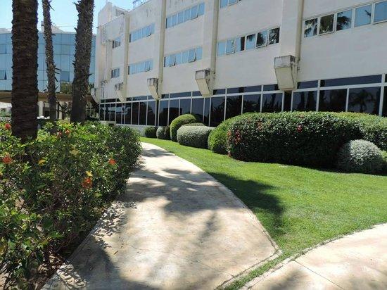 Silken Al-Andalus Palace Hotel : Une vue du parc longeant la piscine
