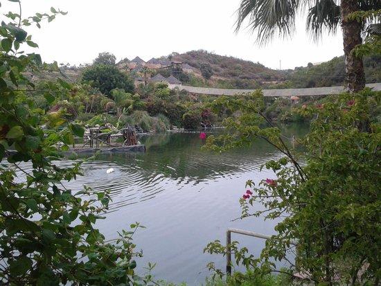 Selwo Lodge Hotel: Vista del lago desde la cafetería para desayunar