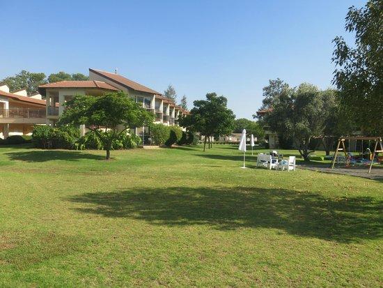 Pastoral Hotel - Kfar Blum : Hotel area