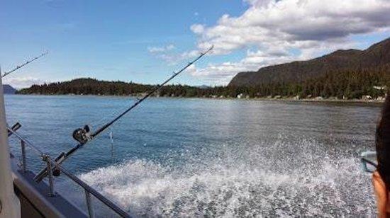 Moore Charters: Pure Alaskan beauty