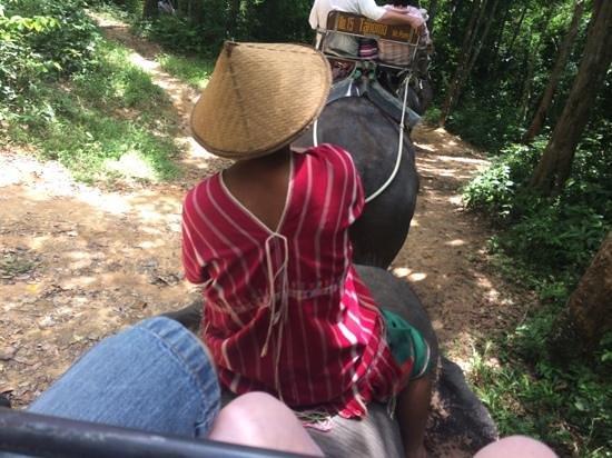 Siam Safari: Our Driver!