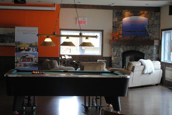 Le Montagnard : Salon Lounge