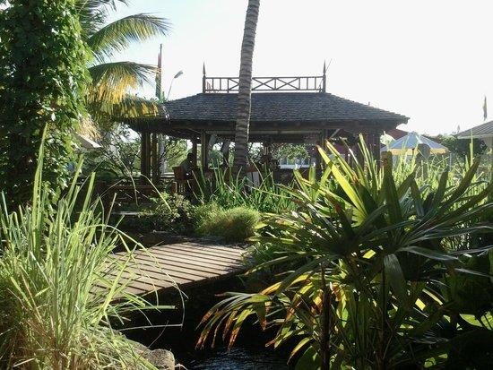 Aanari Hotel & Spa : Jardin de l'hôtel