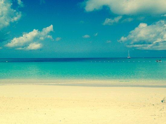 The Westin Grand Cayman Seven Mile Beach Resort & Spa : The Beach at the Westin Grand Cayman