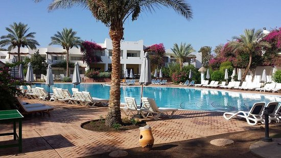 Mexicana Sharm Resort: My Pool :-)