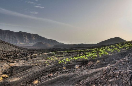 Pico Do Fogo: Инопланетные пейзажи