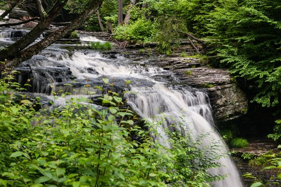 George W. Childs Park : Another View of Fulmer Falls