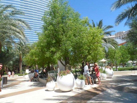 ARIA Resort & Casino: Pool Area
